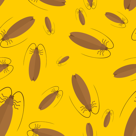 Cockroach pattern seamless. Insect background. ornament. Bug texture. Vector illustration