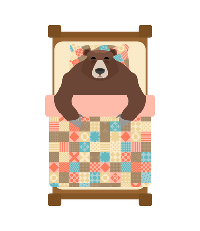 Bear sleeps in bed. sleeping grizzly. Vector illustration