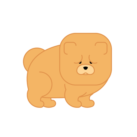 Chow Chow isolated. Dog for China . Pet Vector illustration Illustration