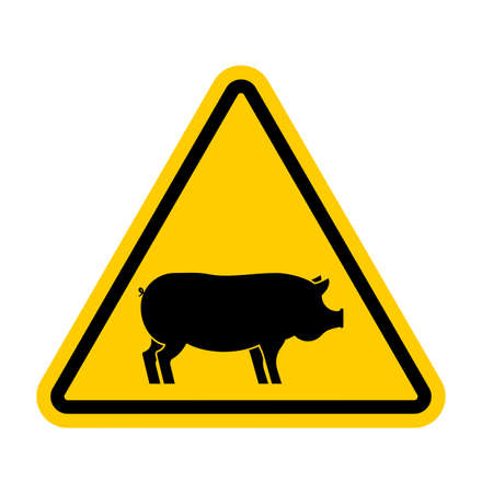 Attention pig. Yellow road sign danger. Caution swine. Vector illustration