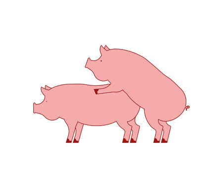 Pig sex. Piggy intercourse. Pigs isolated. Farm Animal reproduction 일러스트
