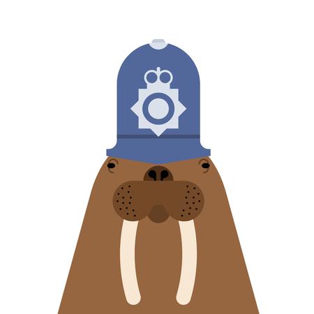 Walrus British policeman. Long tusks. Sea animal antarctica in cap British police officer.