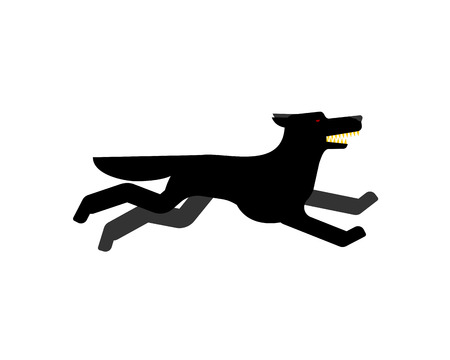 Black wolf runs isolated. Angry predator vector Illustration