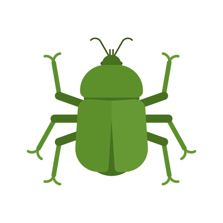 Beetle isolated. bug Insect on white background. vector illustration.