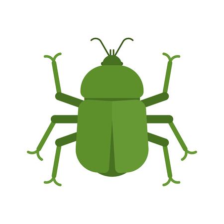 Coléoptère isolé. bug Insecte sur fond blanc. illustration vectorielle. Vecteurs