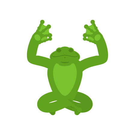 Frog yoga. Toad yogi isolated. anuran Relaxation and meditation. Vector illustration