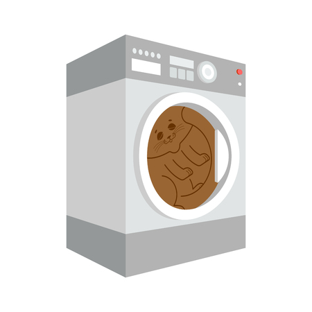Cat in Washer isolated. pet inside washing machine Cartoon Style. Vector Illustration