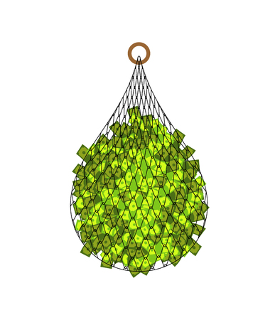 Fishing net and money isolated. fishnet big catch dollar cartoon vector illustration