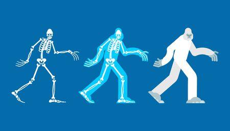Yeti skeleton islated. Bigfoot skull and bones. Abominable snowman. sasquatch Remains   Ilustrace