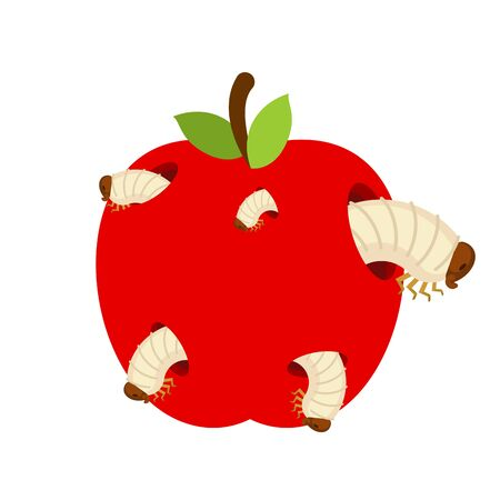 Wormy apple isolated. Fruit and Worms. vector illustration