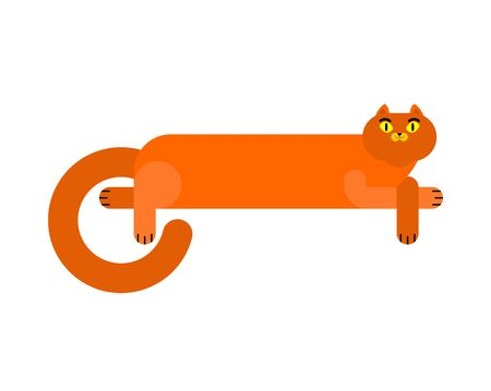 Long cat isolated. Cartoon pet. vector illustration
