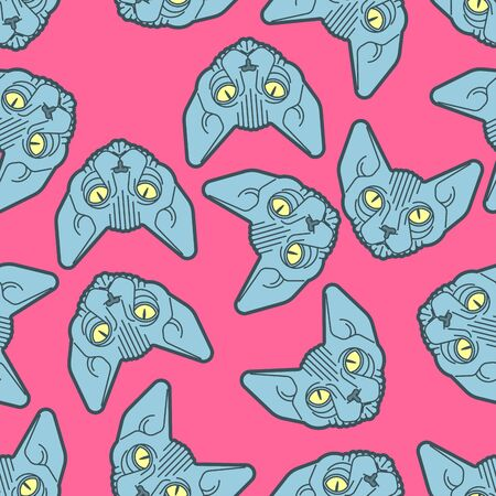 Sphynx cat pattern seamless. Pet background. Home animal texture. vector ornament