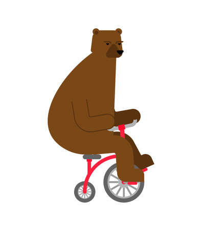 Bear on bicycle cartoon. Beast rides bicycle vector illustration