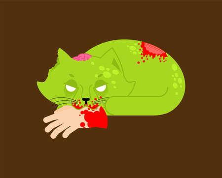 Zombie cat. Pet zombi. Kitten revived dead. kitty green monster