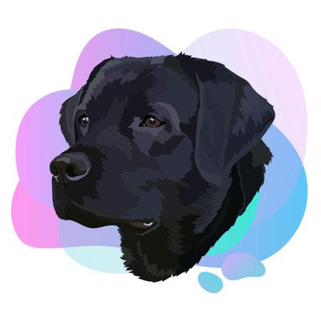 Black labrador vector.Portrait of a dog 1. Trend Vector Illustration