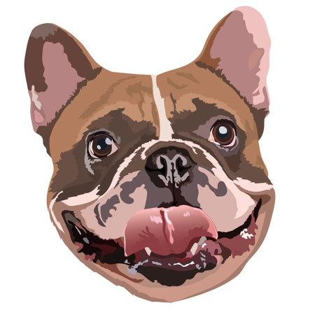 English bulldog face vector illustration