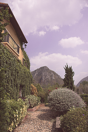 backgraound: Backyard garden in a Tuscan Village with mountain backgraound with vintage color tone