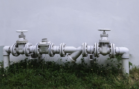 Water pipe for water supply to the plants photo