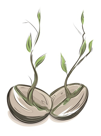 the sprouting: Sprouting hand drawn beans illustration. EPS8 layered vector. No effects.