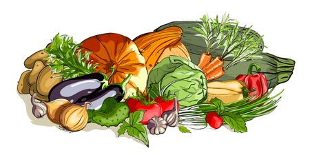 Vegetables Colorful Still Life.  illustration, no effects used. All items are grouped and layered separately. All vegetables  are finished and can be used separately.