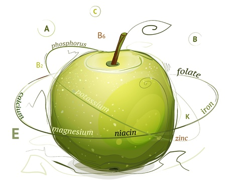 minerals: Apple vitamins and minerals illustration.informative illustration. Apple nutrition facts. Layered and grouped so you can easily remove the signs.