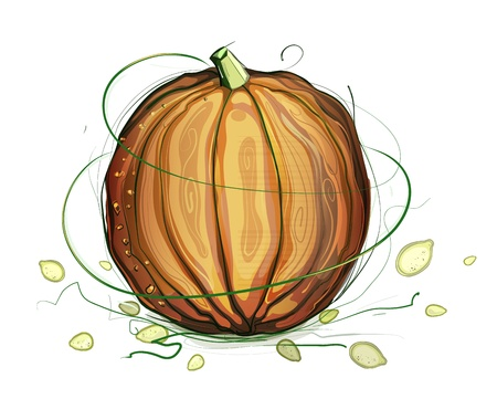 Pumpkin and Seeds Illustration. pumpkin and seeds illustration. Sketchy style. Stock Vector - 15377279