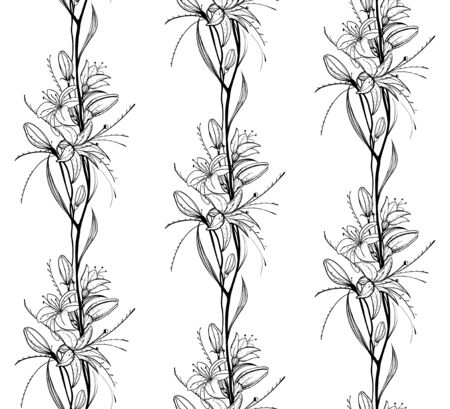 Lily Flowers Outline Seamless Pattern Stock Vector - 17899096