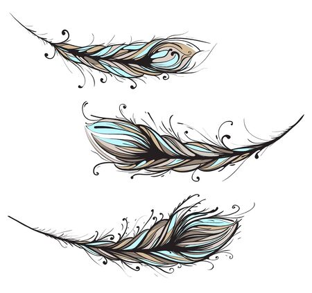 feather quill: Intricate Decorative Feathers Illustration