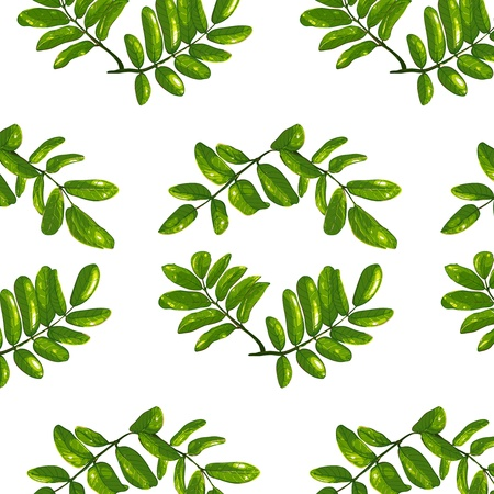 ashberry: Rhombic Leaves Seamless Pattern