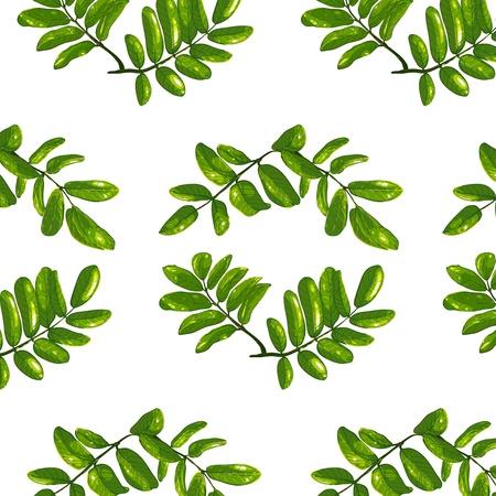 rhombic: Rhombic Leaves Seamless Pattern