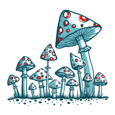 toadstool: Cramped Toadstool Mushrooms Composition  Vector illustration  Fungus growing  Illustration