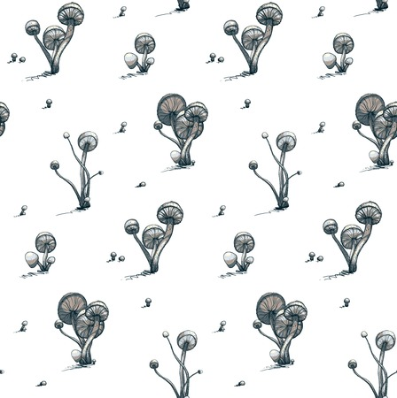toadstool: Poisonous Toadstool Mushrooms Seamless Pattern  Vector illustration  Fungus growing pattern