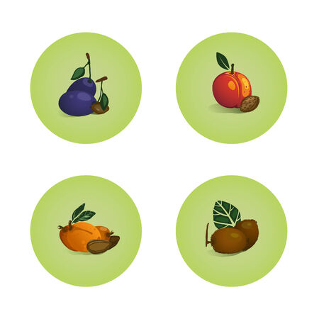 Plum Peach Apricot Kiwi Fruits Icons Set  Vector layered fruit illustration  Still life icons set Stock Vector - 22735367