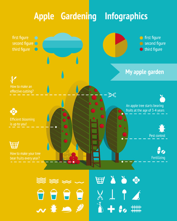 Growing Apple Garden Infographics Elements  Infographic vector illustration with icons set   Illustration