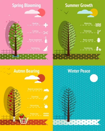 Apple Garden Seasons Infographics Elements  Infographic vector illustration with icons
