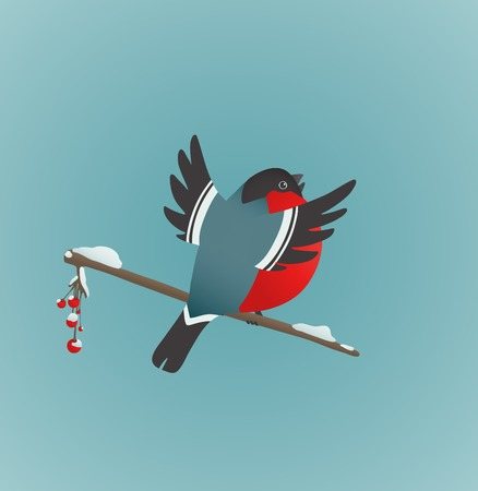 ashberry: Bullfinch Sitting on Ashberry Twig Singing  Bird illustration with berries