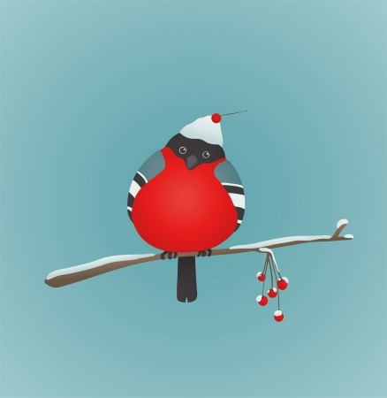Bullfinch Birds Heart Love Couple Sitting on Twig  Bird illustration with berries  Vector
