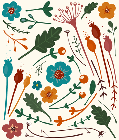 Autmn Flowers Collection  A set of bright flowers and berries  Vector illustration EPS8  Vector