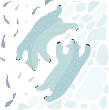 Swimming Polar Bears   Two white bears swimming  Vector illustration EPS8  Illustration