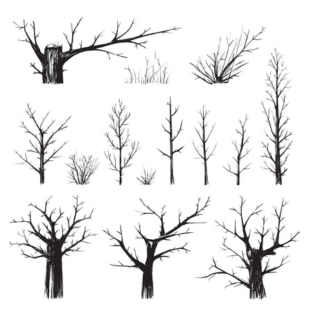 scratchy: Scratchy Trees Collection in Black Silhouettes  Sketchy set of freehand trees drawing  Vector EPS8 illustration