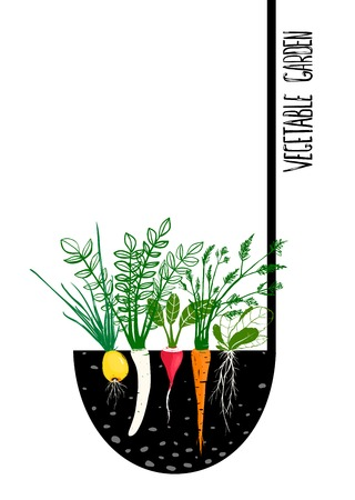 ladles: Grow Vegetable Garden and Cook Soup   Illustration