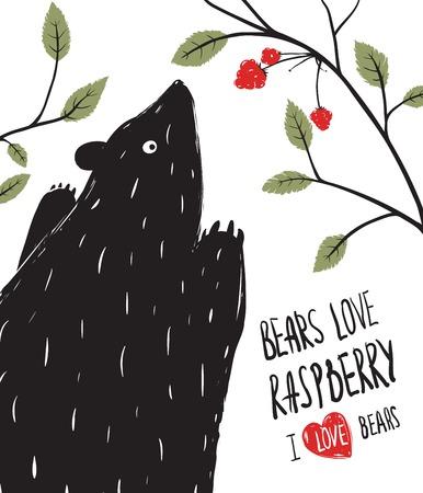 black berry: Wild Black Bear Loves Raspberry  Black ink Bear and berries illustration