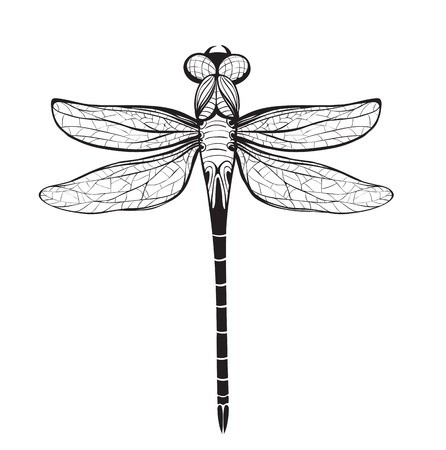 Dragonfly Insect Black Inky Drawing  Flying adder one color outline illustration