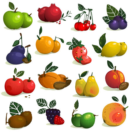 Fruits and Berries Collection.  Vector