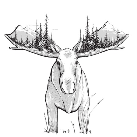 elk horn: Moose Forest and Mountains Illustration. Animal in the nature drawing.  Illustration