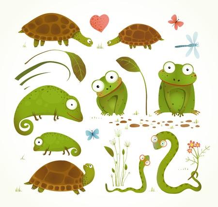 tortuga caricatura: Reptil verde Animales Childish Colección de dibujos animados de dibujo Vectores