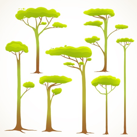 drawing trees: Cartoon Trees Collection Drawing. Forest trees design elements. Vector EPS10 illustration. Illustration