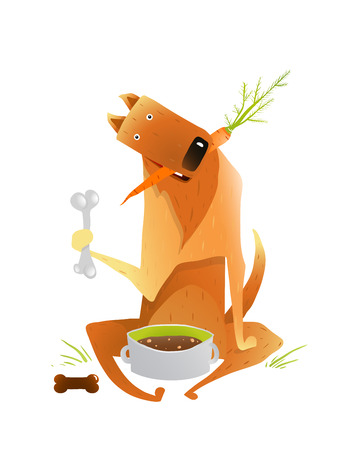 looking after: Feeding Happy Red Dog Healthy Balanced Diet. Looking after a dog and taking care of it. Colorful cartoon illustration. Vector EPS10.