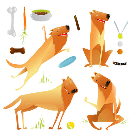dogs playing: Funny Dogs Jumping Playing with Ball Sitting Winning Feeding Clip Art Set. Dogs and doggy items collection colorful illustration. Vector EPS10.