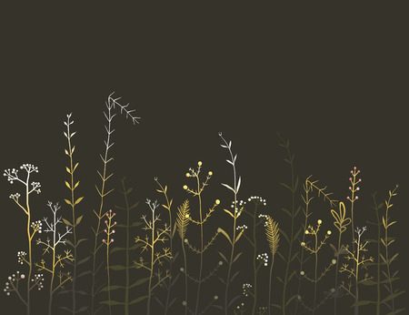 wild grass: Wild Field Flowers and Grass on Black Background. Rustic colorful meadow at night illustration. Vector